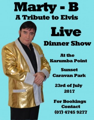 One Evening with Elvis