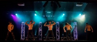Sydney Hotshots Secret Fantasies Ladies Night Show