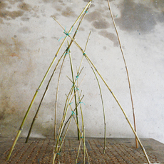 Bamboo Connect by Co-Lab  Free Activities for Kids