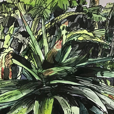 Drawing Green - Michael Pope Residency and Exhibition