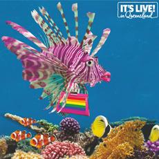 Cairns Tropical Pride Fair Day