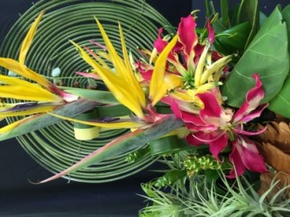 TROPICAL EXPRESSION: THE FLOWERS TELL THE STORY