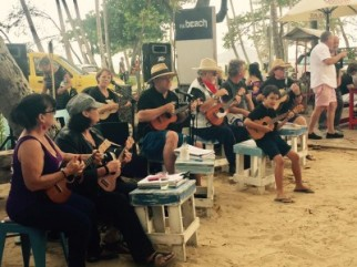 Ukes at Palm Cove