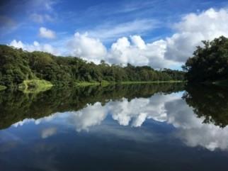Kuranda River Boat Tours!