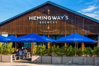 Danny Bani Live @ Hemingway's Brewery