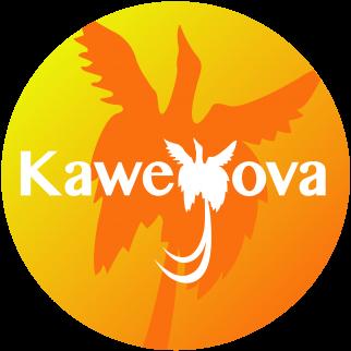 KAWEYOVA DUO