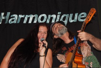 Harmonique at McGinty's
