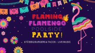 FLAMING FLAMENGO - POOLSIDE PARTY !